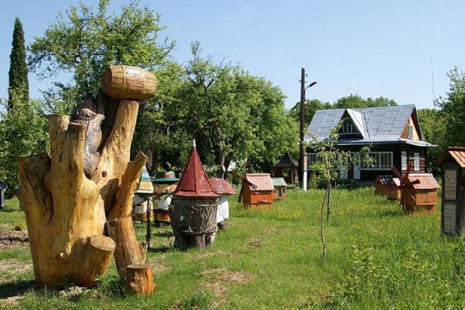 «Кобаківчанка» поєднала велич природи, дух історії, красу культури