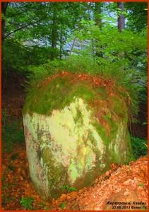 Жертовний Камінь перед Стіною Пантеону (її силует – за деревами)