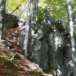 Камінь-Довбуша-на-Каменистому-хребті-3